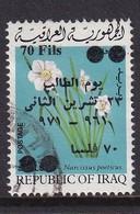 Iraq 1971, Overprint, Minr 693, Vfu. Cv 3,80 Euro - Iraq