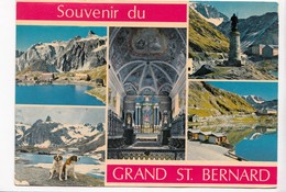 Souvenir Du GRAND ST. BERNARD, Used Postcard [23183] - Italy