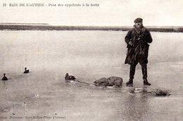 Pose Des Appelants A La Hutte - Chasse
