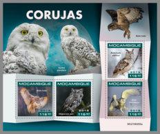 MOZAMBIQUE 2019 MNH Owls Eulen Hiboux M/S - OFFICIAL ISSUE - DH1919 - Owls