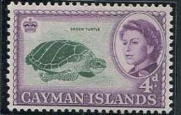 244 CAIMANS (Iles) 1962 - Yvert 163 - Tortue Elizabeth II - Neuf ** (MNH) Sans Trace De Charniere - Cayman Islands