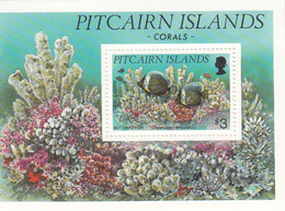 1994 Pitcairn Island Corals Fish Marine Life  Complete Set Of 1 Souvenir Sheet  MNH - Pitcairn Islands