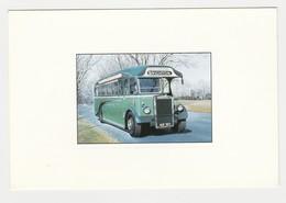 BUS Autobus Leyland 1947 Gouache D'Yves Dubernard N°3537 Southdown BRIGHTON - Bus & Autocars