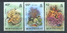 244 MONTSERRAT 1979 - Yvert 411/13 - Corail Poisson Recif - Neuf ** (MNH) Sans Trace De Charniere - Montserrat