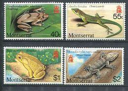 244 MONTSERRAT 1980 - Yvert 414/17 - Batratien Reptile - Neuf ** (MNH) Sans Trace De Charniere - Montserrat