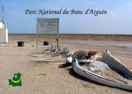 Mauritania Banc D'Arguin National Park UNESCO New Postcard Mauretanien - Mauretanien