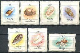 244 TONGA 1984 - Yvert 559/65 - Coquillage - Neuf ** (MNH) Sans Trace De Charniere - Tonga (1970-...)
