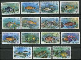 244 TURKS Et CAIQUES 1978/79 - Yvert 412/26 - Poissons - Neuf ** (MNH) Sans Trace De Charniere - Turks And Caicos