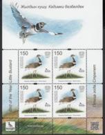 Kirgistan Kyrgyzstan MNH** 2019  Bird Little Busard Sympathis Issue CEPT 2019  Mi 129 KB M - 2019