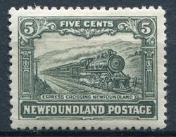 CANADA - TERRE NEUVE - N° 135 * - TB - Terre-Neuve