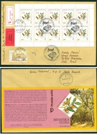 Croatia 2002 FDC Flora Oak Booklet Kind Quercus Ilex Wood Floraart Exhibition Zagreb Valuable Letter Cover - Croatia