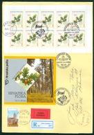 Croatia 2002 FDC Flora Oak Booklet Kind Quercus Robur Floraart Exhibition Zagreb Wood Valuable Letter Cover - Croatia