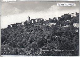 PESCIA - FIBBIALLA - Pistoia