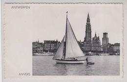 Anvers Panorama. - Antwerpen