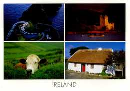 CPM - Salutations D'Irlande - Irlande