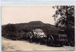 El Salvador - Coffee Estate - Peasant Cart - PHOTOGRAPH Foto Radio. - El Salvador