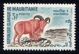 Mouflon à Manchettes (Animaux) - Mauritanie - 1960 - Mauritania (1960-...)