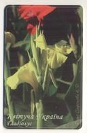 UKRAINE - Blooming Ukraine - Gladiolus - Flower - Phonecard Telecard Chip Card 11200 Units - Blumen