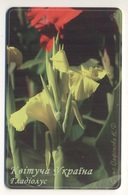 UKRAINE - Blooming Ukraine - Gladiolus - Flower - Phonecard Telecard Chip Card 11200 Units - Flores