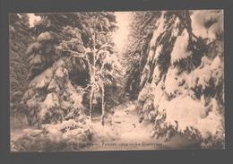 Sart-lez-Spa - Février 1924 - La Chevresse - Jalhay
