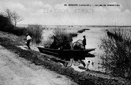 (103)  CPA  Bouaye  Lac De Grand Lieu     (Bon Etat) - Bouaye