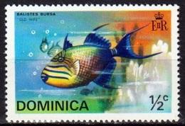 Balistes Bursa (Poisson) - Dominique - 1975 - Dominique (1978-...)