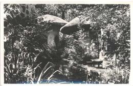 Kaatsheuvel, De Efteling, Onder Grote Paddestoelen  (glansfotokaart) - Kaatsheuvel