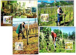 VIÑEDO: 12 MESES DE TRABAJO - VINEYARD: 12 Months Of Works. Set 12 TM/MC. Liechtenstein 2003 - Vinos Y Alcoholes
