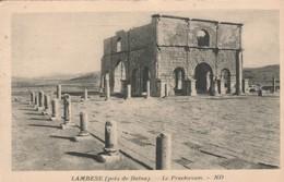 ALG085 CPA -   LAMBESE (pres De Batna)    Le Praetorium       NV - Batna