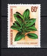 COTE D'IVOIRE N° 528  NEUF SANS CHARNIERE COTE 1.20€  PLANTE    VOIR DESCRIPTION - Ivory Coast (1960-...)