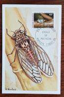 POLYNESIE Cigale, Yvert 516 FDC, Carte Maximum 1er Jour, Cachet 7 Aout 1996 - Insetti