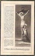DP. JACOBUS BAELEMANS ° RAEVELS 1835 - + RANST 1925 - Religion & Esotérisme
