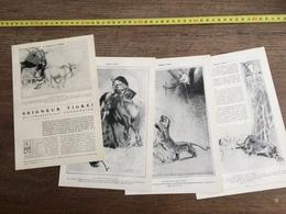 1907 JST SEIGNEUR TIGRE PAR L EXPLORATEUR COMBANAIRE THUDAUMOT ANNAM - Verzamelingen