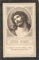 DP. LEONIE VAN HAELST ° KOEWACHT 1849 - + WESTDORPE 1924 - Religion & Esotérisme