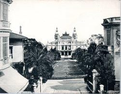 MONACO -- MONTE CARLO -- Photo  -- Casino Et Jardins  Monte Carlo N° 19 -- Circa 1905 - Monaco