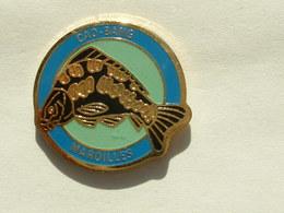 Pin's PECHE - CAO BANG - MAROILLES - Pin