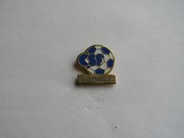 Pins Football.CSF Fraisses - Calcio