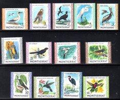 CI1023 - MONTSERRAT 1970 , Serie Yvert N. 231/243 ***  MNH Uccelli Birds (2380A) 13 Valori. Gomma Stanca - Montserrat