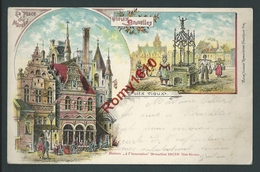 Vieux Bruxelles. Place Du Marché - Puits Vieux. Litho 2445.  Circulé En 1897. - Panoramische Zichten, Meerdere Zichten