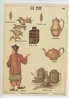 Le Thé (feuille Rameau Boite Bouillotte Théière Service Chinois) Cp Vierge N°543 Musée Scolaire Affiche Sur Carte - Plantes Médicinales
