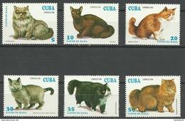 CUBA 1994 **  YT 3351/6 ** MNH GATOS CATS - Aéreo