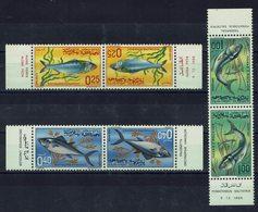 MAROC - 1967 - Poissons - Trois Paires Tête-bêche N° 514 A à 516 A - Neufs - XX - MNH - TB - - Morocco (1956-...)