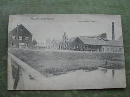 CALLOO - SUIKERFABRIEK 1909 ( Scan Recto/verso ) - Antwerpen