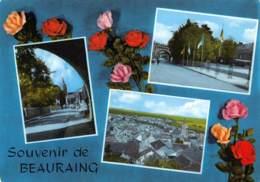 CPM - Souvenir De BEAURAING - Beauraing