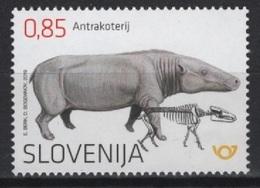 Slovenia (2019) - Set -  /  Prehistory - Archaeologie - Prehistoric - Fauna - Fossil - Prehistory