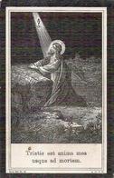 DP. ELODIE FERMIJN ° LEYSELE 1896 - + 1909 - Religion & Esotérisme