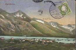 YT Island 62 Centenaire Jón Sigurðsson 1c Vert Olive Reykjavik 6 VI 14 Dos Semeuse Camée France Affranchissement Mixte - Cartas