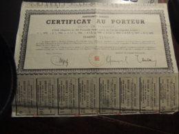 Certificat Au Porteur  EMPRUNTS SERBES   AVEC 8 COUPONS - Shareholdings