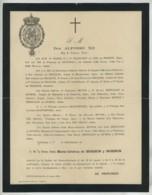 Faire-part De Décès De La Reine D'Espagne Maria-Cristina De Borbon Y Borbon . Alfonso XII . 1878 . - Obituary Notices