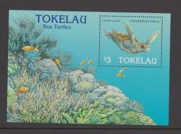Tokelau SG MS 238 1995 Year Of Turtle Miniature Sheet,mint Never Hinged - Tokelau